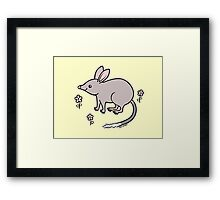 Pretty Bilby with Flowers Framed Print
