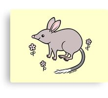 Pretty Bilby with Flowers Canvas Print