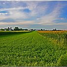 Lancaster County Landscape by Chet  King