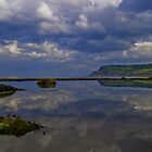 Rock Pool Reflection by Andy Beattie