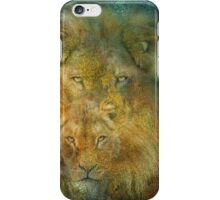 Moods Of Africa - Lions 2 iPhone Case/Skin