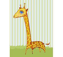 Baby Giraffe Photographic Print