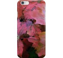 Autumn Moods 1 iPhone Case/Skin