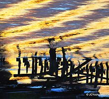 Ripple Effects of the Day by MacroXscape