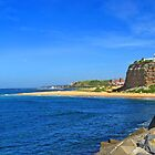 Nobby's Beach & Lighthouse by Liz Percival