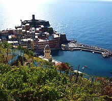 Vernazza from above by Allison Peters
