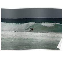 Surfing shelly beach lll Poster