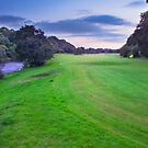 listowel golf club - 028 by Paul Woods
