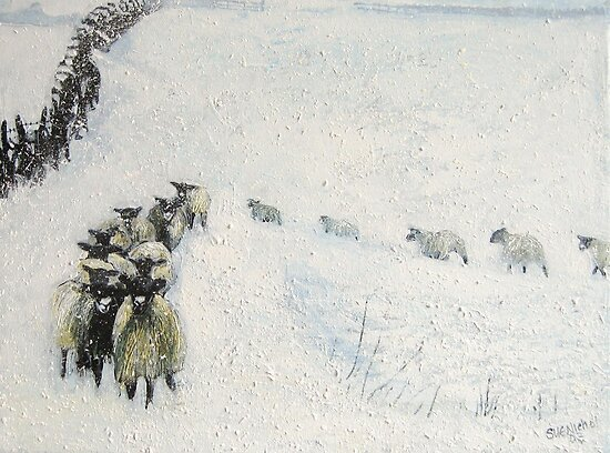 Swaledales in Snow by Sue Nichol