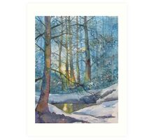 Winter Light in the Forest Art Print