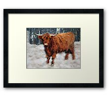 My Feets Are Cold Framed Print