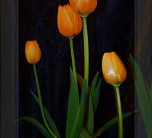 Just Orange by Elaine Teague