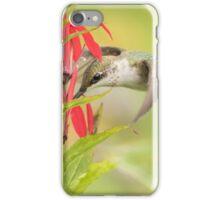 Ruby Throated Hummingbird 6-2015 iPhone Case/Skin