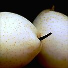 Square of Two Pears by paintingsheep