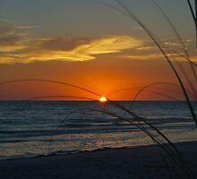sunset by Mark de Jong