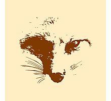 Vector Fox Photographic Print