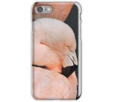 Pink With Desire iPhone Case/Skin