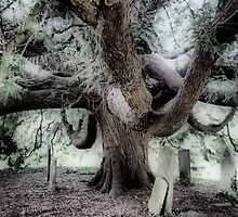 Tree in The Churchyard by Karen Martin