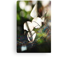 Abstract Nature Canvas Print