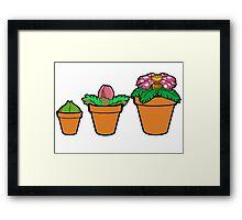 Bulba-pots Framed Print