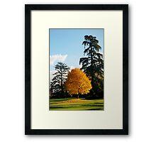 Chaumont Gardens Framed Print