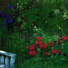 It's my Jungle by enchantedImages