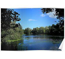 Lower Mill Pond - Oare Poster