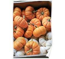 Itsy Bitsy Pumpkins Poster