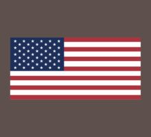 American Flag by dtkindling
