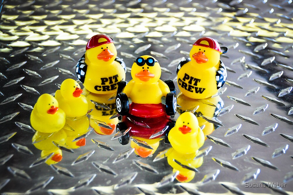 Yellow Ducks Racing Team ~ The Official Team Picture by Susana Weber