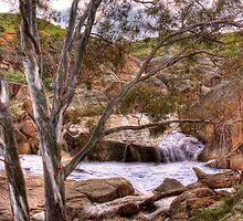 The Falls - Mannum Falls, Riverland, South Australia by Mark Richards