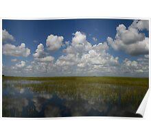 Everglades journey Poster