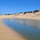 REDHEAD BEACH LAGOON NSW AUSTRALIA by Bev Woodman