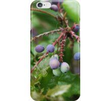 Purple Berries iPhone Case/Skin