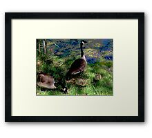 A Fine Canadian Family    Framed Print