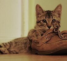 Boris and my Sperry's  by samwouldwhat