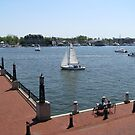 From US Naval Academy, Annapolis, MD by Edmond J. [&quot;Skip&quot;] O&#x27;Neill