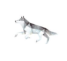 Low Poly Watercolor - Wolf by scarriebarrie