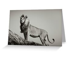 THE LION KING by Dennys Ilic Greeting Card