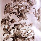 Hummingbird by cheetaah
