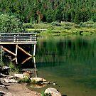 Lily Lake Colorado by saxonfenken
