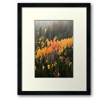 A Colorado Fall Framed Print