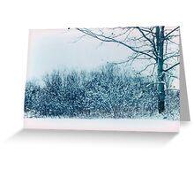 Snowy morning - Berwick, Nova Scotia Greeting Card