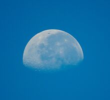 The Moon Today 8/30/2010 at 9:13 am by TJ Baccari Photography