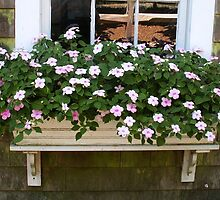 Gristmill windowbox by amygriff