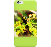 Portrait of a wasp iPhone Case/Skin