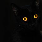 Spooky eyes by Erica Sprouse
