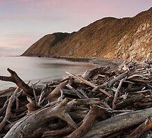 Dusk at Opau Bay, near Makara Beach by Brendon Doran