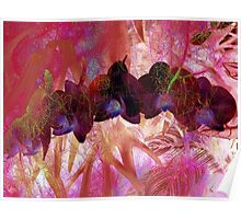 Iridescent Orchids 2 Poster