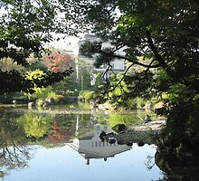 Tennoji Museum Reflection by Tomoe Nakamura